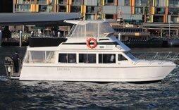 medium catamaran white boat