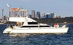 large catamarn background sydney